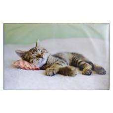 Idena Mapa de birou, Motiv: Pisica
